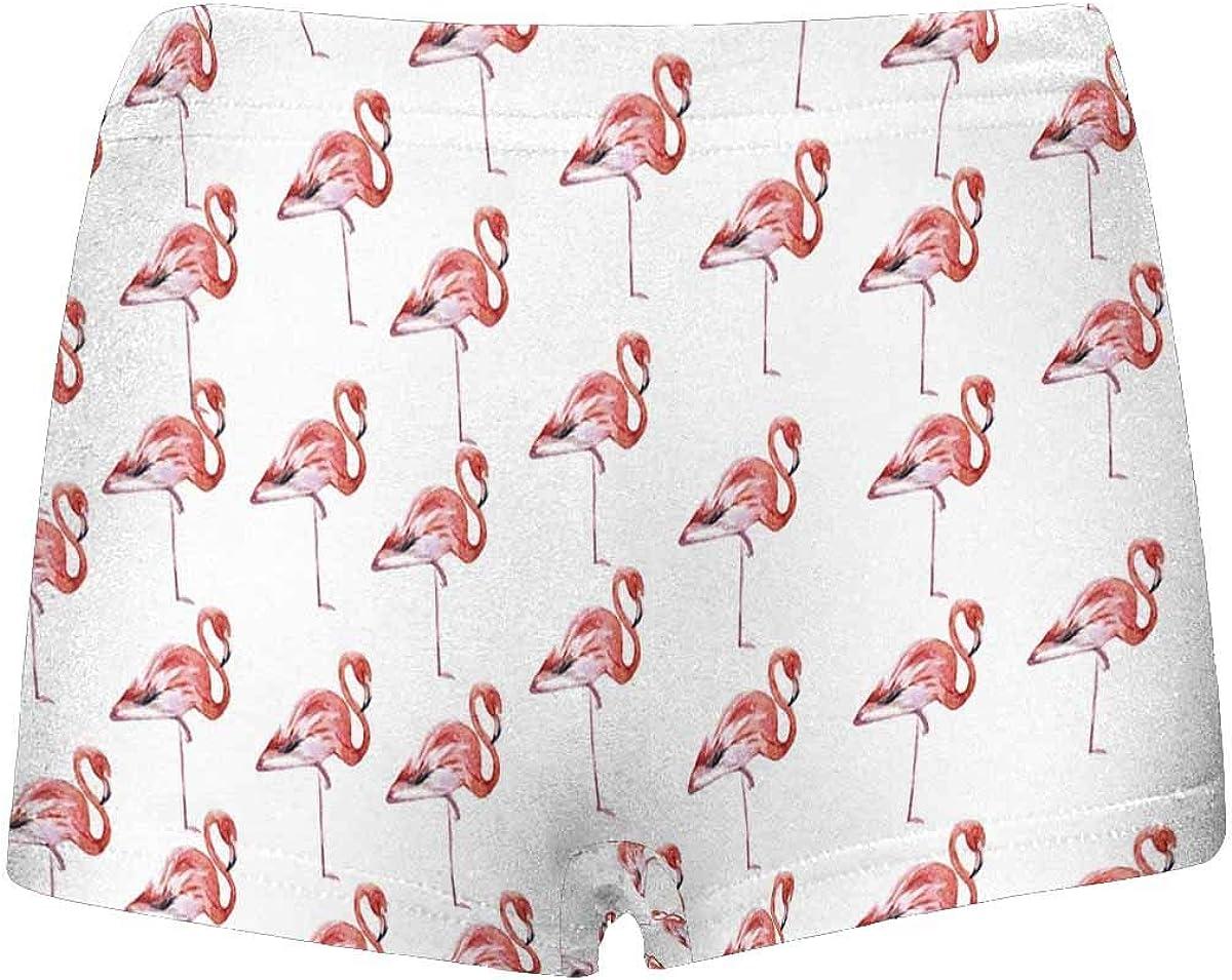 INTERESTPRINT Boys Flamingo Bird Boxer Brief Underwear 5T-2XL