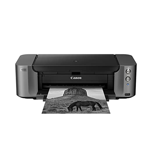 Impresora de inyección de tinta Canon PIXMA PRO-10S Gris Wifi ...