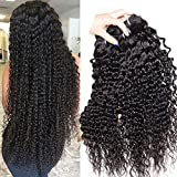 (US) Malaysian Deep Wave Curly Virgin hair 3 Bundles Wet and Wavy 100% Unprocessed Human Hair Weave Weft Extensions 95-105g/pc Natural Black Color 14 16 18inch