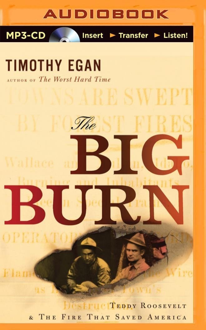 The Big Burn: Teddy Roosevelt & the Fire That Saved America ebook