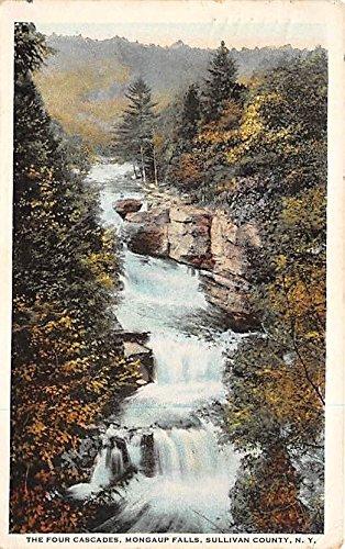 (The Four Cascades Mongaup Falls Mongaup Falls, New York, Postcard)