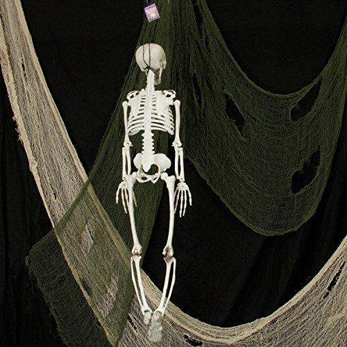 Halloween Haunters 3 Foot Hanging Full Body Skeleton Plastic Prop Decoration - Posable Joints, Scary Human Skull & Bones by Halloween Haunters (Image #2)