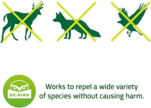 Amazon.com: Maya resistente contra aves: protege las plantas ...