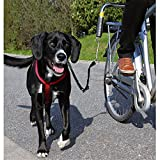 Trixie Biker - Set For Large Dogs (One Size) (Black/Silver)