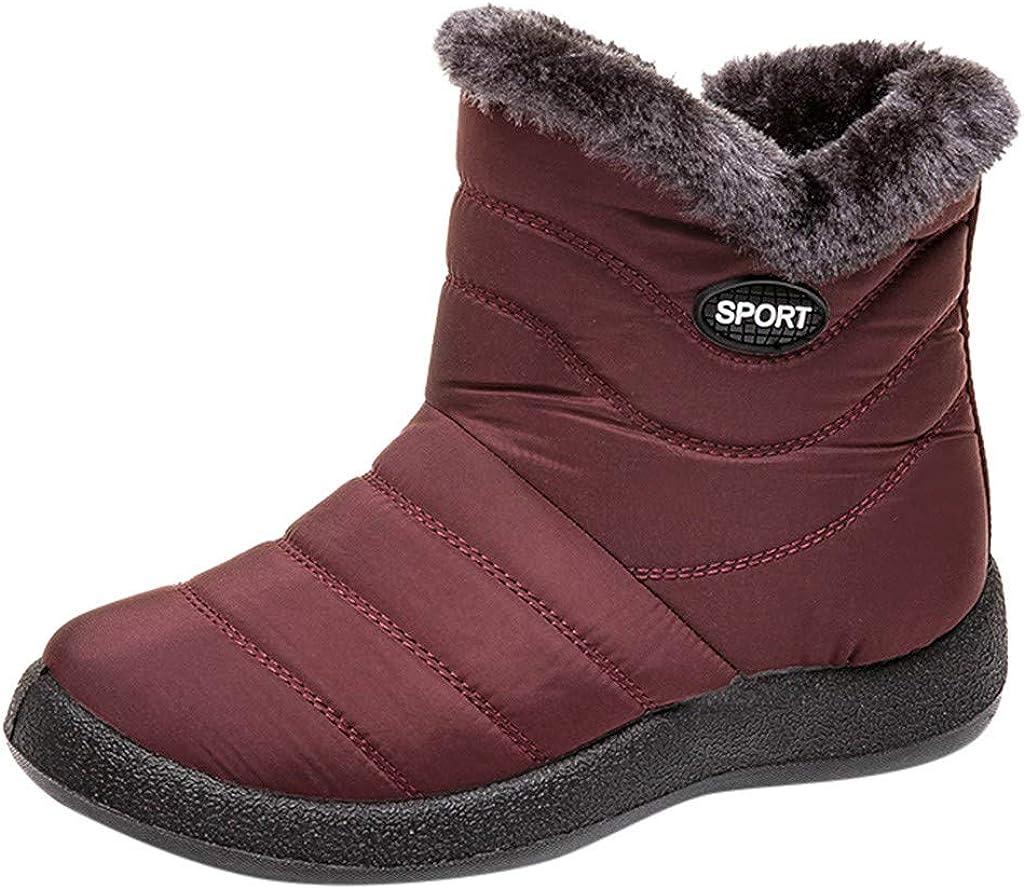 Zapatos de Invierno de Mujer de Las señoras Botas Bajas de Botas de Nieve de Cortas de Gamuza gastadas más Terciopelo Botas Corta Mujer por Yesmile
