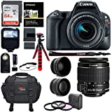 Canon EOS Rebel SL2 DSLR Camera with EF-S 18-55mm STM Lens, Sandisk 64GB Memory Card, Telephoto, Wide Angle Lenses, Filter Kit and Accessory Bundle