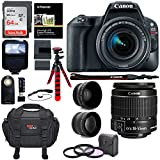 Canon EOS Rebel SL2 DSLR Camera, EF-S 18-55mm STM, Sandisk 64GB Memory Card, Telephoto, Wide Angle Lens, Filter Kit and Accessory Bundle Review