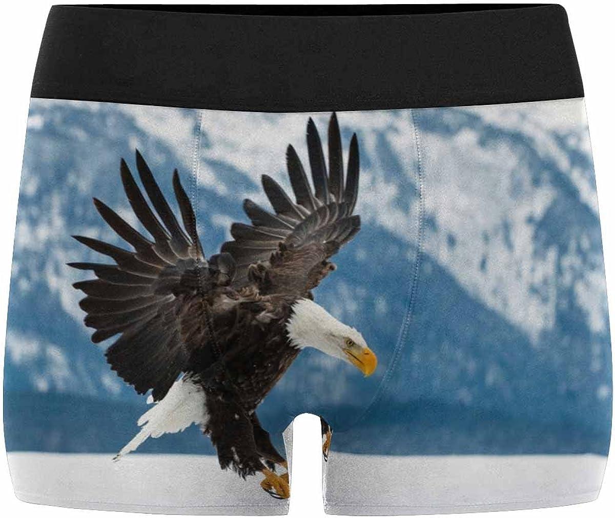 INTERESTPRINT Mens Boxer Briefs Underwear American Eagle XS-3XL