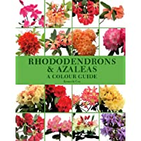 Rhododendrons and Azaleas: A Colour Guide