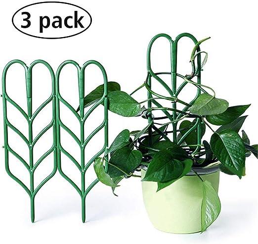 Cavestoff - Juego de 3 Soportes para Plantas de jardín (Enrejado, Escalada, jardinería), diseño de celosía: Amazon.es: Jardín
