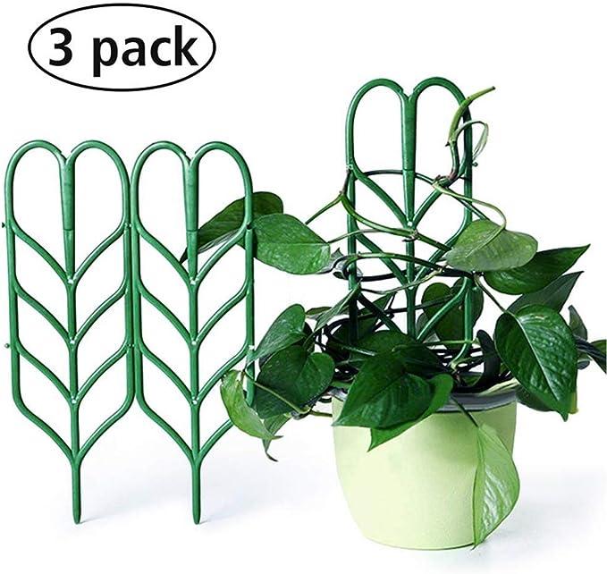 Cavestoff - Juego de 3 Soportes para Plantas de jardín (Enrejado ...