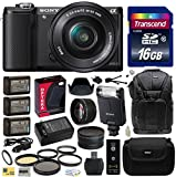 Sony Alpha A5000 20.1 MP Interchangeable Mirrorless Lens Camera with 16-50mm OSS Lens ILCE5000L (Black) with Advanced Accessories Bundle Kit includes Sony HVL-F20M External Flash + 16GB Class 10 SDHC Memory Card + x3 Replacement (1200mAh) NP-FW50 Battery