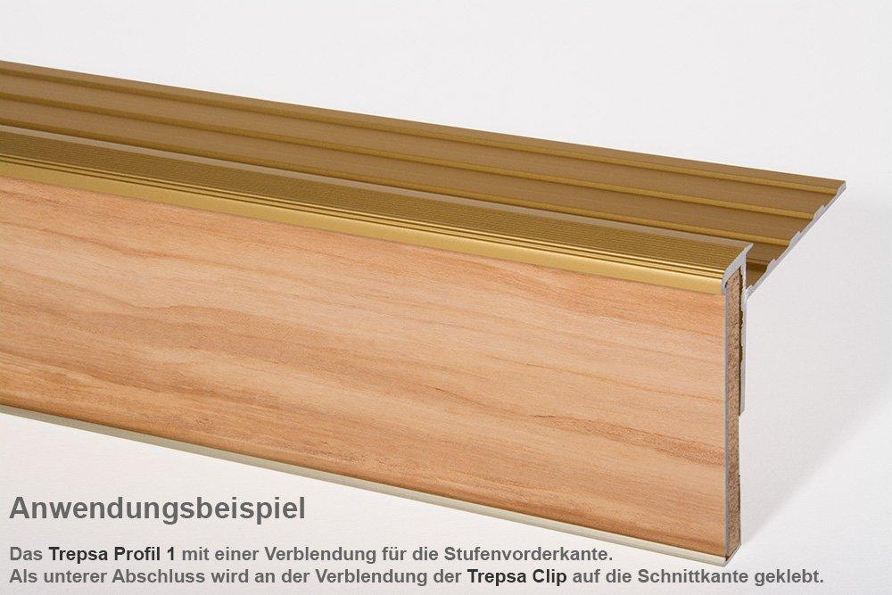 1000 mm, Silber Trepsa Treppenkantenprofil Profil 1 mit Abschluss-Clip Aluminium eloxiert