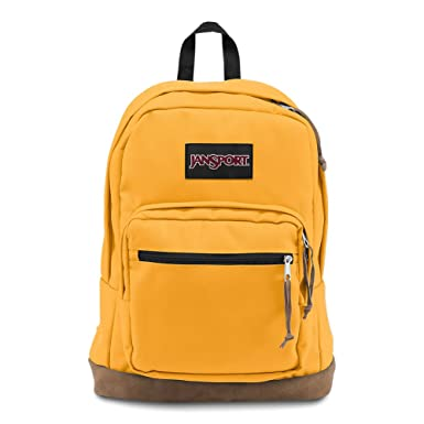 d8700fa84503 JanSport Right Pack