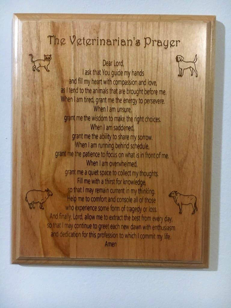 Etching Memories Veterinarian Prayer on a Red Alder 8 inch by 10 inch Plaque