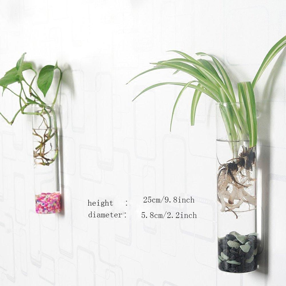 Siyaglass Pack of 2 Crystal Glass Wall Hanging Flower Vase Planter Terrarium Container Flower Pot Cylinder Shape