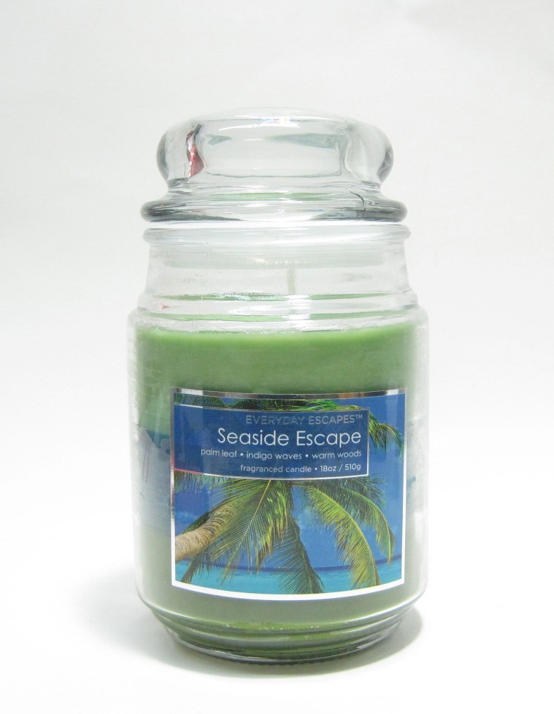 Everyday Escapes by MVP Group Large Candle 18 oz --- Seaside Escape Palm Leaf/Indigo Waves/Warm Woods by Everyday