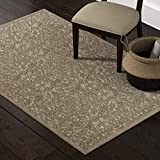 Stone & Beam Floral Wool Rug, 5′ x 8′, Taupe