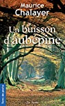 Un buisson d'aubépine par Chalayer