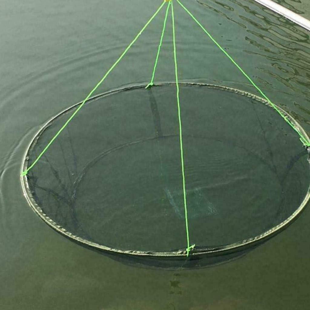 Fishing Net, Portable Folded Fish Drop Mesh, Easy Use Landing Hole Cage Bait Shrimp Minnow Crab Fish Lobster