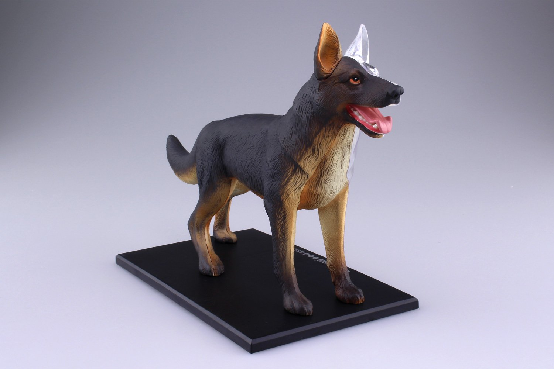 Amazon.com: Standing Puzzle 4D VISION Animal Anatomy Model No.18 Dog ...