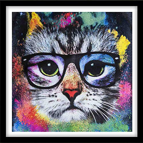 5D Diamond Painting Kits for Adults Full Drill Diamond Embroidery Colorful - Black Cat,9.8 x 9.8 inch(Frameless)