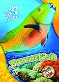 parrotfish ocean life up close blastoff readers level 3