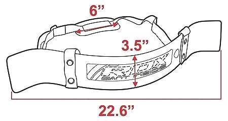 RDX Bíceps aislador Blaster Barra Bar levantamiento de pesas Bomber Formación Arm Curl: Amazon.es: Deportes y aire libre