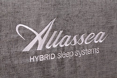 Allassea Gold Fusion 12-Inch Hybrid Memory Foam and Spring Mattress, King (Also...