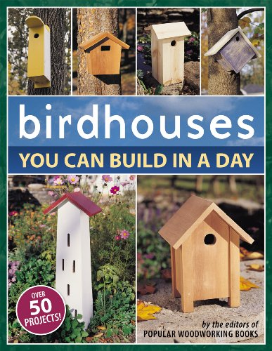 (Birdhouses You Can Build in a Day (Popular)