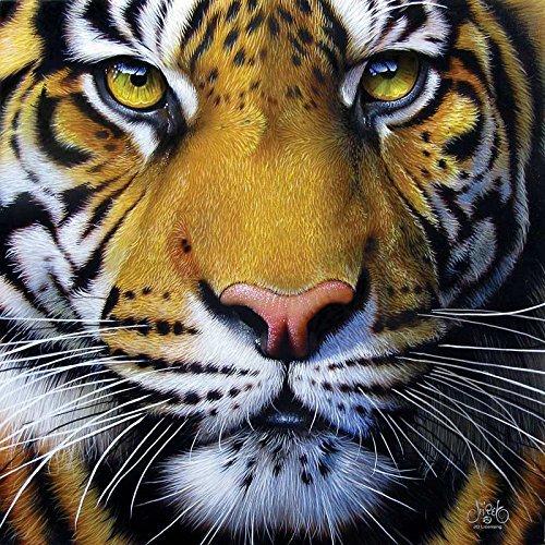 Golden Tiger Face a 1000-Piece Jigsaw Puzzle by Sunsout Inc. by SunsOut ()