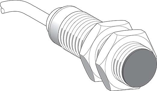 Schneider Electric XS518BSDAL2 Sensor Inductivo Xs5 M18, L39Mm, Brass, Sn5Mm, 12-