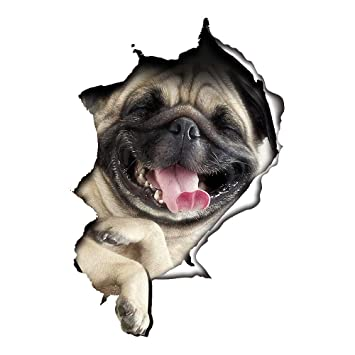 Süß 3D Katze/Hund Wandaufkleber Kinderzimmer Schlafzimmer Wandtattoo WC  Deckel Wasserfest Aufkleber Badezimmer Wandsticker Kühlschrank DIY Sticker  (3D ...