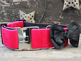 """product image for Diva-Dog 'Marilyn' 2"""" Extra Wide Custom Engraved Dog Collar"""