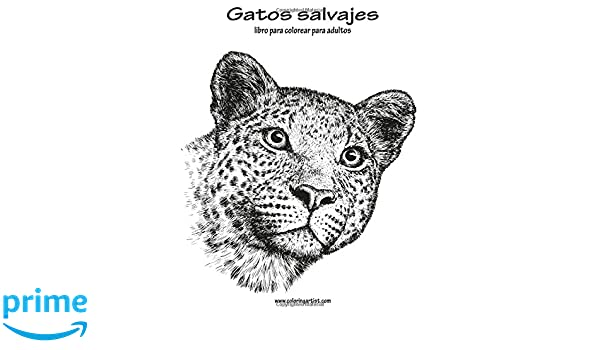 Gatos salvajes libro para colorear para adultos 1: Volume 1: Amazon.es: Nick Snels: Libros