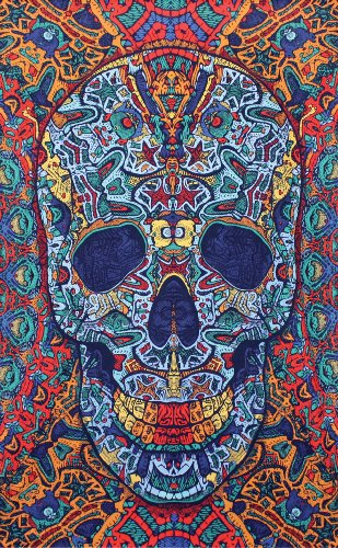 - Sunshine Joy 3D Skull Tapestry - Beach Sheet - Hanging Wall Art (30X45 inches)