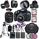 Canon EOS Rebel T6 DSLR Camera with Canon EF-S 18-55mm f/3.5-5.6 IS II Lens + Sandisk 16GB & 32GB Class 10 SD Memory Cards +Accessory Bundle