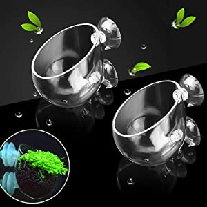 capetsma 2X Crystal Glass Aquatic Plant Pot, Aquarium Aquatic Planter, Red Shrimp Live Plants Fish Tank Glass Holder with 4X Suction Cups for Aquarium Aquascape Decorations …