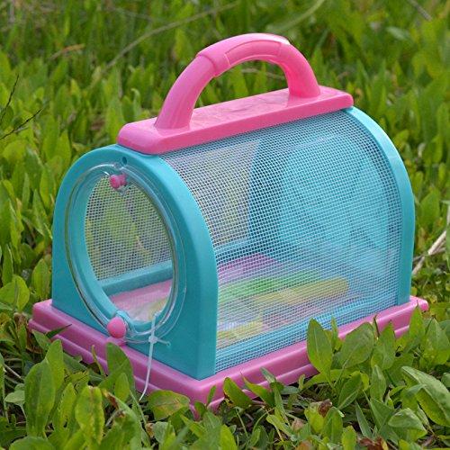 Eleganantimpresionante Caja de Almacenamiento para Insectos, Jaula ...