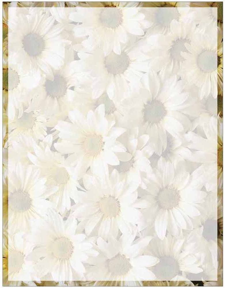 Full Daisies Print with Border Stationery Letter Paper - Floral Flower Theme Design - Gift - Business - Office - Party - School Supplies : Office Products