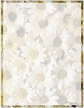 Amazon Com Full Daisies Print With Border Stationery Letter
