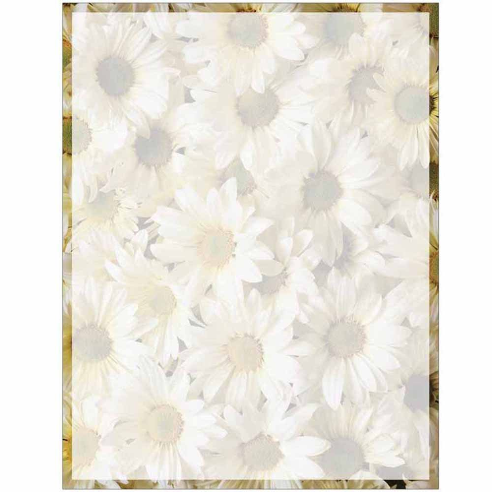 Amazon full daisies print with border stationery letter paper amazon full daisies print with border stationery letter paper floral flower theme design gift business office party school supplies izmirmasajfo