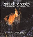 Spirit of the Rockies: The Mountain Lions of Jackson Hole