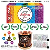 Aromafume 7 Chakra Incense Bricks Starter Kit containing Tree of Life Exotic Incense Diffuser (Gift Set). Ideal for Meditation, Purification, Yoga, Chakra Alignment, Relaxation, Healing & Rituals