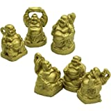 2,5 cm Gold laughing Buddha Collection Gift set di 6 figurine (mini oro)