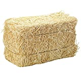FloraCraft Straw Bales, 5-Inch-by-6-Inch-13- Inch Bale