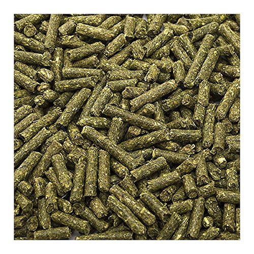 Small Pet Select Guinea Pig Food Pellets, 25 Lb. by Small Pet Select