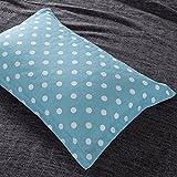 "Qbedding Organic Adjustable, Refillable Buckwheat Pillow with Bonus Pillow cover (15""x24"") (Lagoon Blue)"