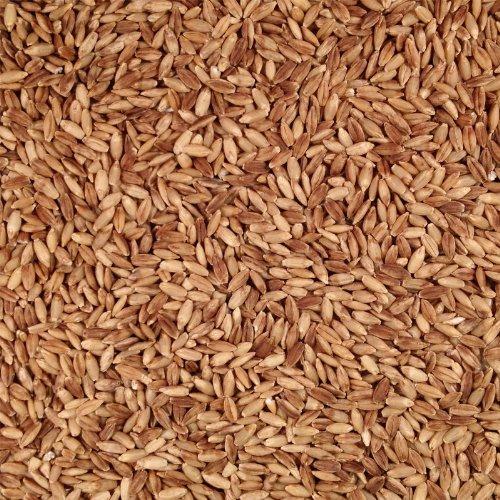 Grain Place Foods Non-GMO Organic Hull-less eBarley 2lb Bag