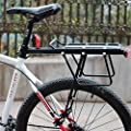 Bike Cargo Rack,LOPEZ Disc Brake Bicycle Bike Alloy Rear Rack Quick Release Bicycle Carrier Rack Luggage Protect Pannier